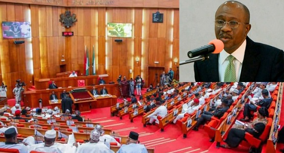 CBN Governor appearing to Senate on cryptocurrency trading ban
